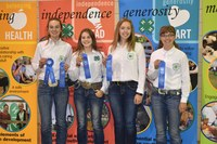 The Ward County team takes first place in the senior division of the state horse judging contest. Pictured are, from left: Anne Schauer, Emily Fannik, Olivia Lebrun and Mikaela Woodruff. (NDSU photo)