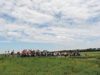 Producers and others attend a field day at NDSU's North Central Research Extension Center. (NDSU photo)