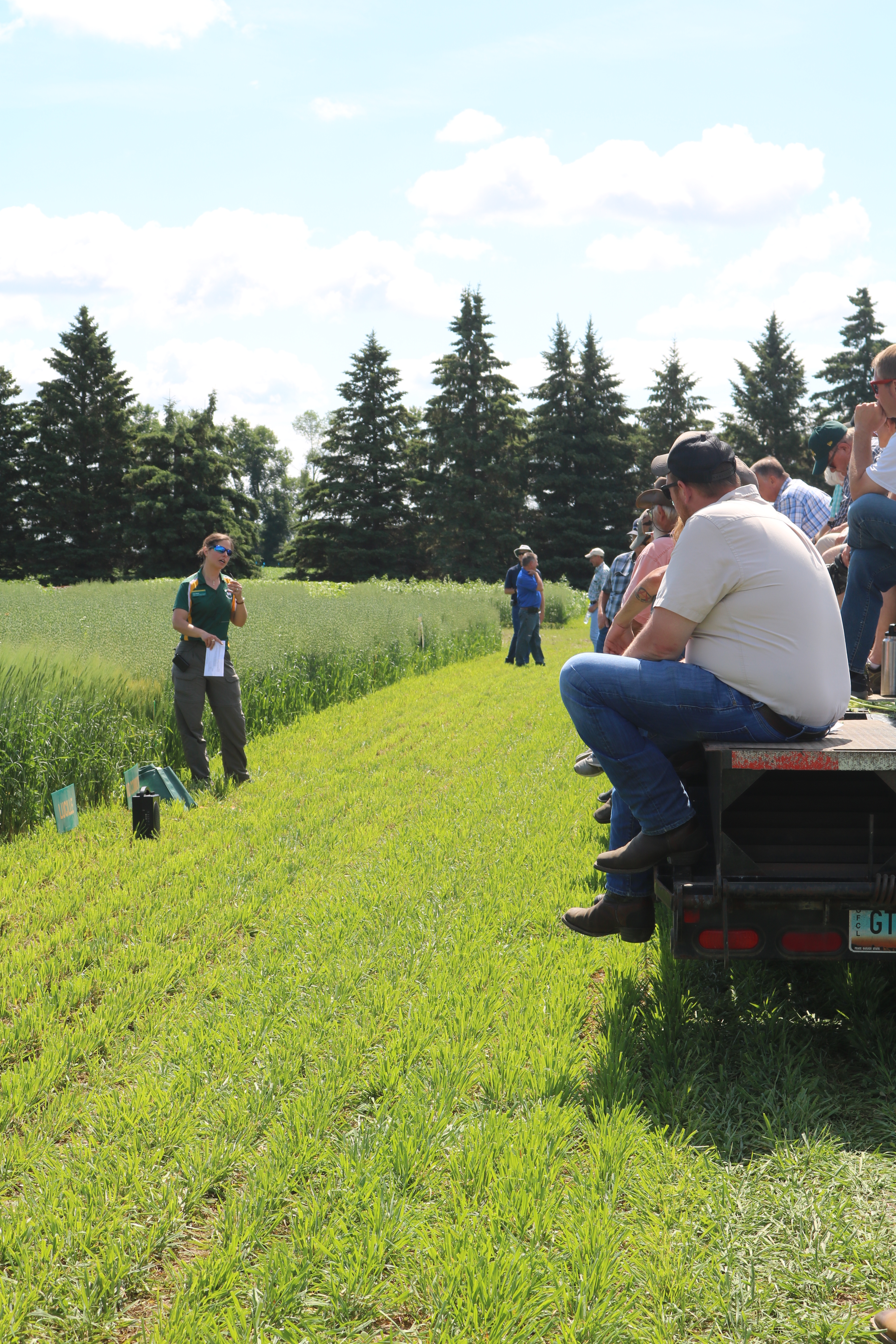 Producers and others learn about organic and sustainable agriculture during a field tour at NDSU's Carrington Research Extension Center. (NDSU photo)