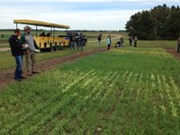 Participants receive updates on crop pest and soil management recommendations during NDSU Extension's annual crop management field school. (NDSU photo)