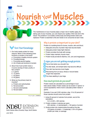 Nourish Your Muscles