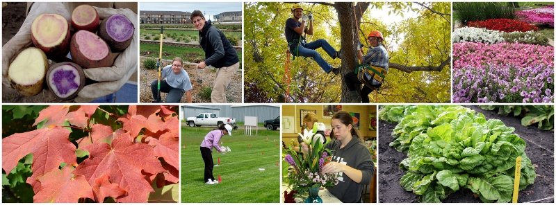 Horticulture program collage