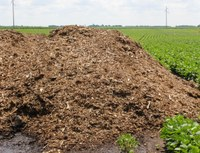 Bones are Bad in Potato Production