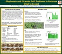 Glyphsoate and Dicamba Drift Problmes in Potatoes