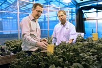 NDSU / U of M International Potato Scout School