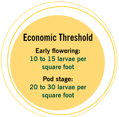 Economic Threshold