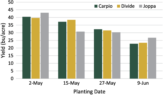 Effect of planting date on yield