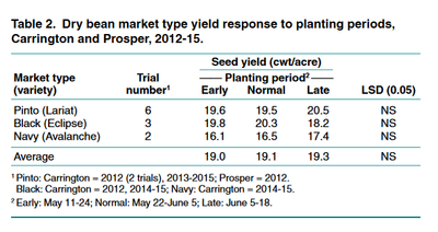 Dry bean market type yield