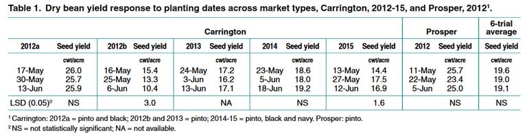 Dry bean yield response