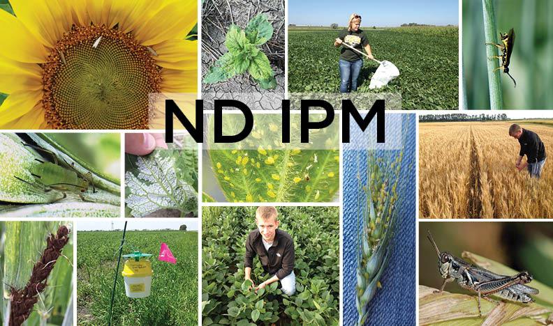ND IPM Logo