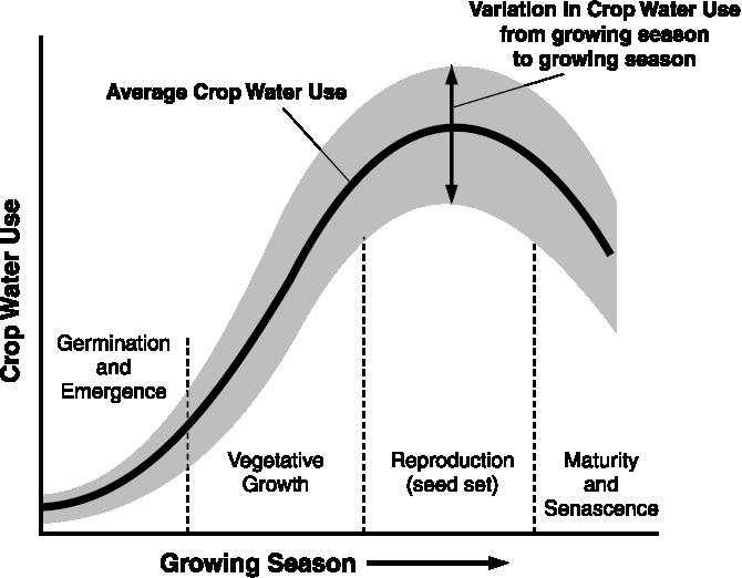 Water use curve Figure 10