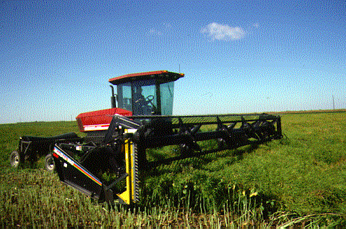 Swather equipped with vertical cutter bar