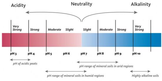 range of pH found in soils