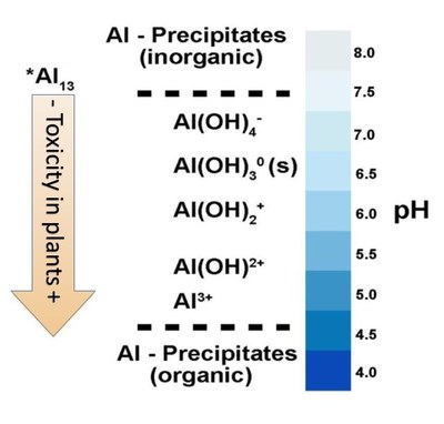 changes in Al3+ ionic species as soil pH changes