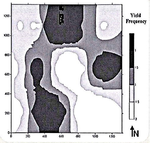 Williston yield frequency