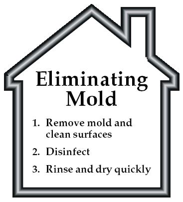 Eliminatring Mold
