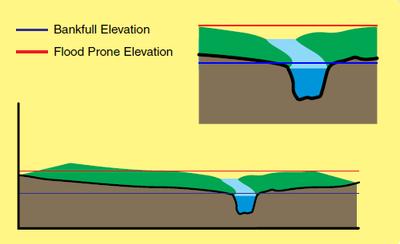 Bankfull Elevation Flood Prone