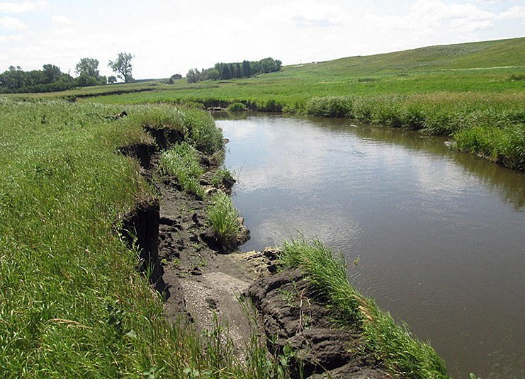 Bank sloughing along stream