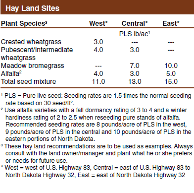 Hay Land Reclamation