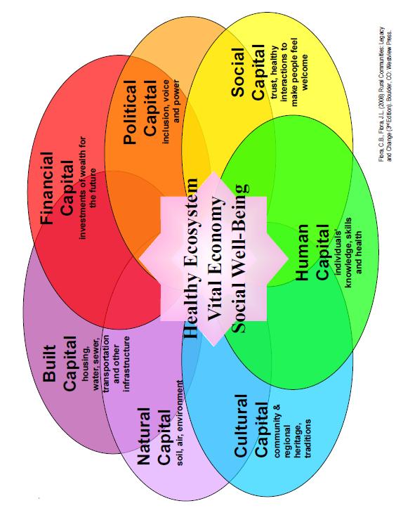 Healhty Ecosystem Bital Economy