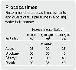 process time