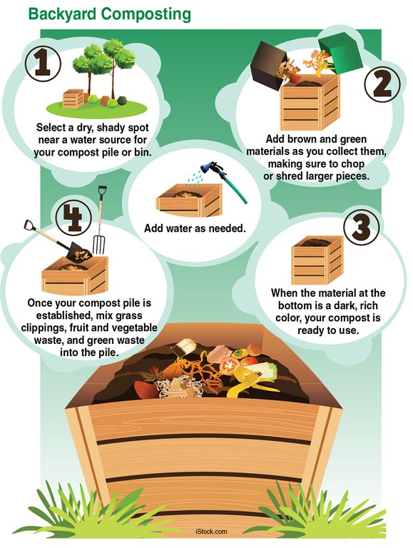 Backyard composting steps