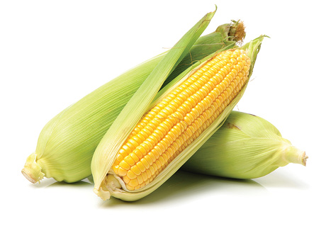three cobs of sweet corn