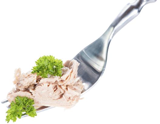 Tuna on a fork