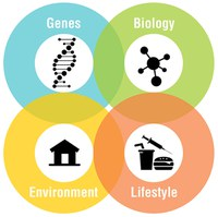 Image displaying Genes, Biology, Environment, and Lifestyle