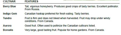 Honeyberry Chart