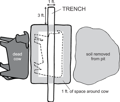 top view of pit with trench