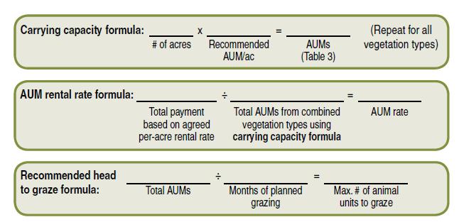 capacity formula