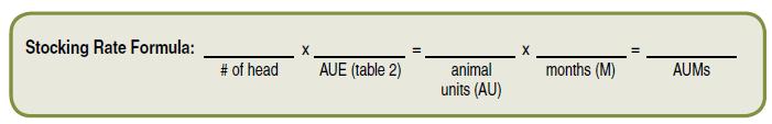 Stocking Rate Formula