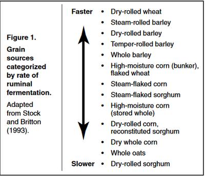 Grain Sources