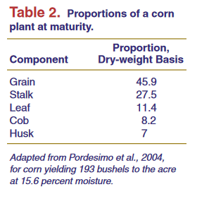 Proportions of a corn plant at maturity