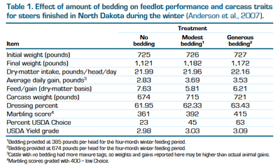 Effects of bedding on feedlot performance