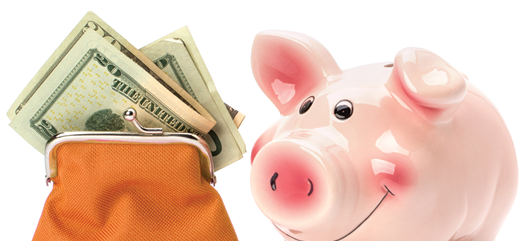 photo of piggy bank and money