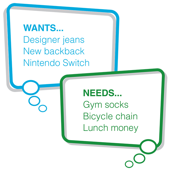 examples of wants and needs