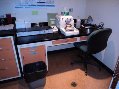 Histo Lab 1