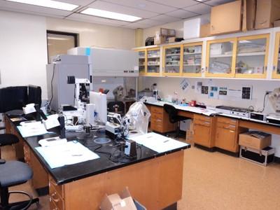 Embryo Lab 1