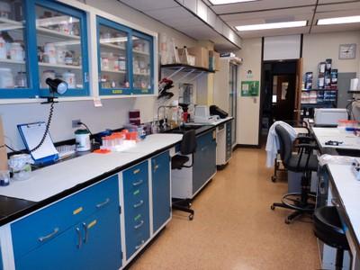 Mol Bio Lab 1
