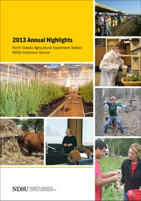 2013 annual highlights
