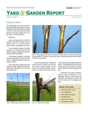 NDSU Yard & Garden Report for June 16, 2014