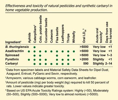 Effectiveness and toxicity of natural insecticides in home vegetable gardening