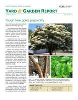 NDSU Yard & Garden Report for June 15, 2015