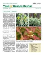 NDSU Yard & Garden Report for September 1, 2015
