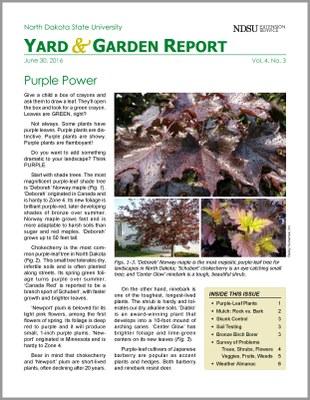 NDSU Yard & Garden Report for June 30, 2016