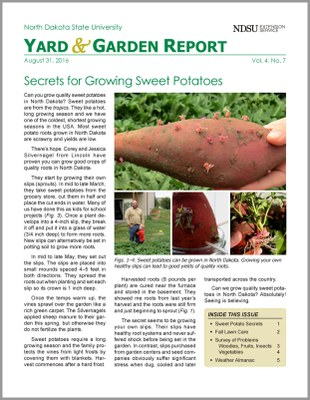 NDSU Yard & Garden Report for August 31, 2016