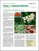 NDSU Yard & Garden Report for September 12, 2016