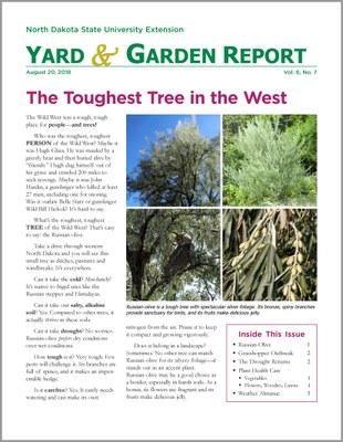 NDSU Yard & Garden Report for August 20, 2018